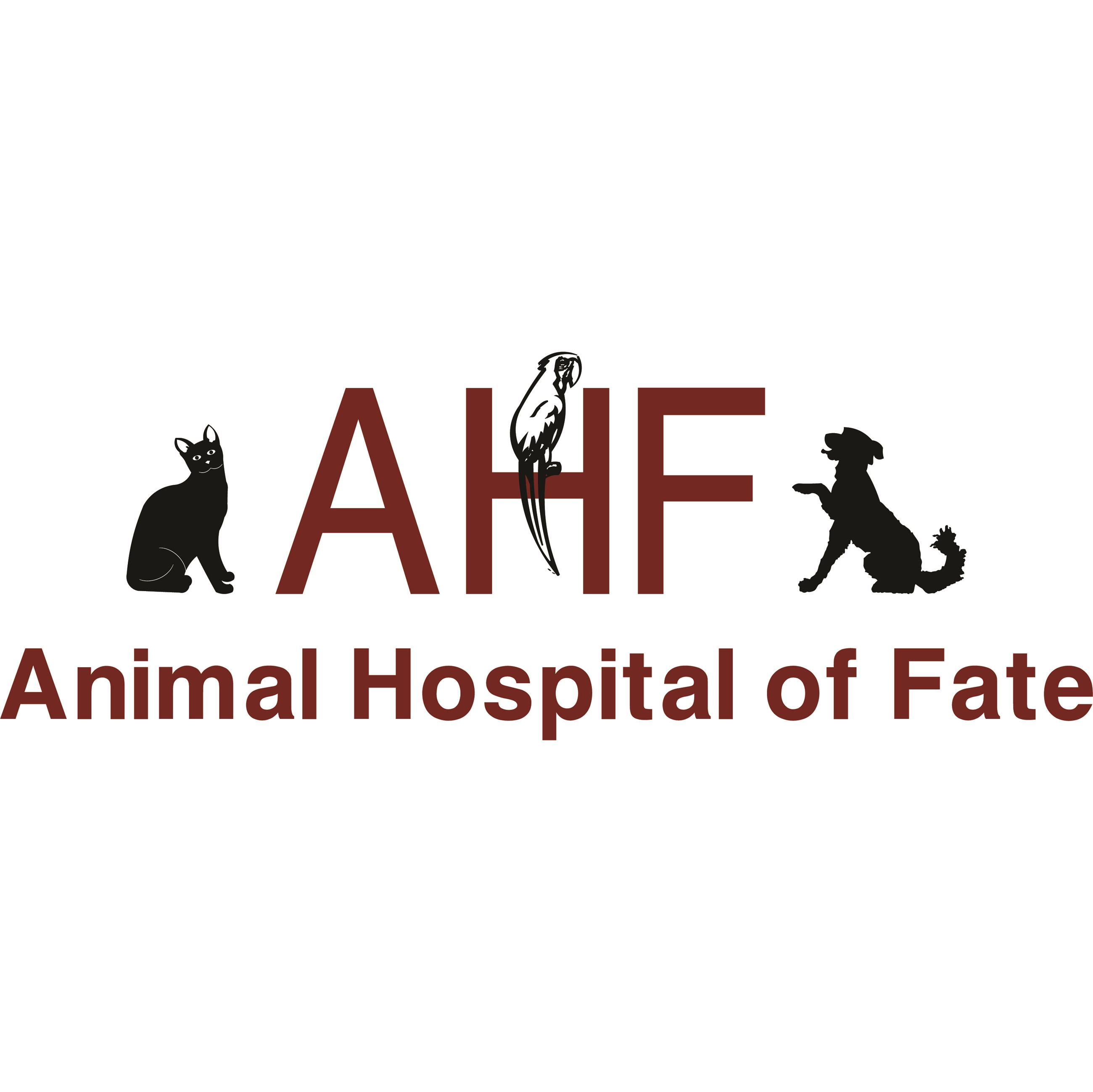 Animal Hospital of Fate logo with a cat bird and dog
