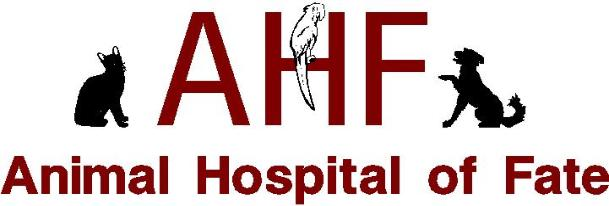 Animal Hospital of Fate